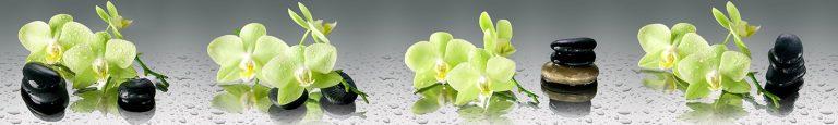 Скинали зеленая орхидея каталог изображений