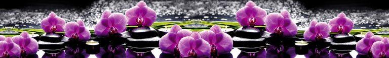Каталог изображений для скинали фиолетовая орхидея.