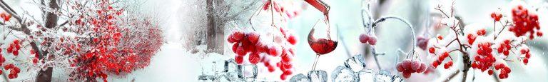 Скинали рябина в снегу каталог изображений