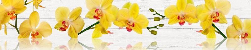 Фартук для кухни скинали желтая орхидея.