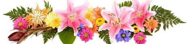 Каталог изображений для скинали композиция с лилиями.
