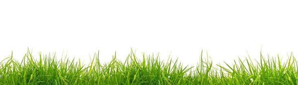 Фартук для кухни скинали зеленая трава.