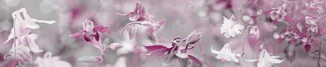 Каталог изображений для скинали сиреневые весенние цветы.