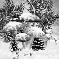 Zimowa sceneria z grzybami