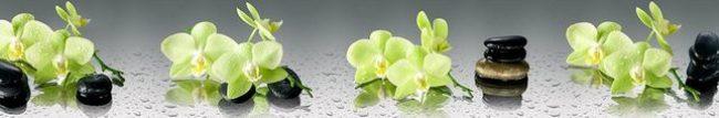 Кухонный фартук зеленая орхидея каталог изображений