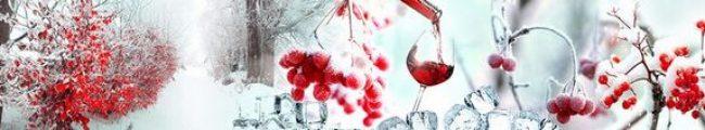 Кухонный фартук рябина в снегу каталог изображений